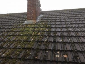 moss on roof soft wash roof cleaning Gloucester